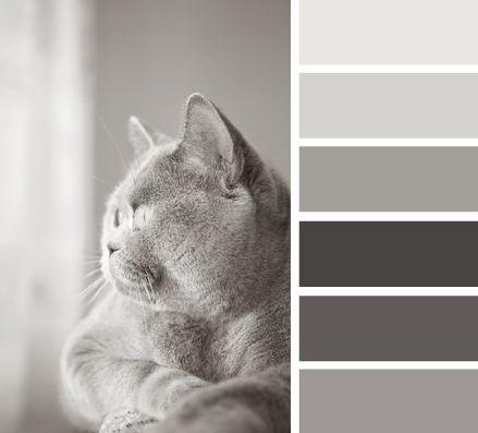 colorchart_2